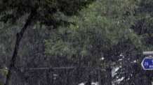 [뉴스탐색]마른 장마 4년 만에 마감…아열대 기후로 바뀌었나