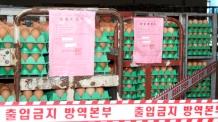 """'살충제 범벅' 친환경 인증제 개편…농식품부 """"조속히 수립할 것"""""""