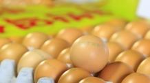정부, '살충제 계란' 대응 불안…난각코드 오류 되풀이