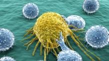 [제약톡톡]성장하는 면역항암제 시장…국내사들도 도전장