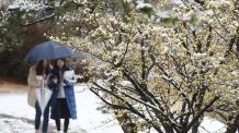 [안심못할 꽃샘추위 ①] 감기 2주 이상 지속되면 폐렴 가능성