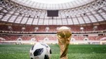 """골키퍼들, 러시아 월드컵 공인구에 """"문제 많은 공"""""""