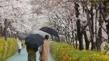 [22일 날씨] 흐리고 비…미세먼지 '양호'