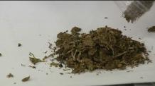 힙합 뮤지션 2명 대마초 흡연 혐의 검찰 기소