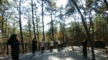 관악구, '관악 치유의 숲길'서 산림치유 프로그램