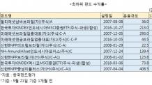 통화가치 하락 맞은 신흥국 펀드 '울상'