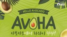 쥬씨, 아보카도를 활용한 신제품 '아보하 4종' 출시