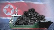 국내 불법반입 북한산 석탄, 행선지 '오리무중'