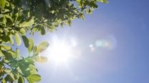 [내일날씨] 아침도 30도 육박…대구 낮 최고 38도