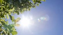 [19일 날씨] 폭염 꺾였지만 더위는 여전…낮 최고 34도