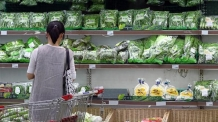 (온 06:00) 역대급 폭염에 8월 농산물 생산자물가 '사상 최고'