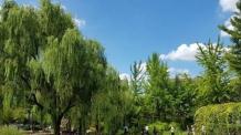 여의도공원 외벽 사라졌다, 자유로운 진출입 허용