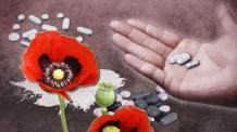 마약 성분 다이어트약 온라인 판매…마약사범 26명 적발