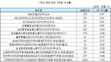 '검은 목요일' 이후 계속 눈물짓는 중국 펀드