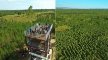 유한킴벌리, 몽골에 여의도 11배 숲 조성