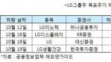 LG그룹주 줄줄이 목표가↓… 왜?