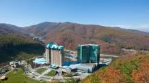 강원랜드 지역경제 부흥 3라운드, 음식,관광,라이프스타일