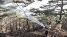 인왕산 산불 완전진압…1시간여만에 200㎡ 피해