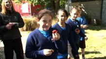 뉴질랜드 초교 시상식 폐지 '논란'