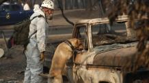 '역대 최악' 北캘리포니아 산불 사망... <YONHAP NO-2256 번역> (AP)