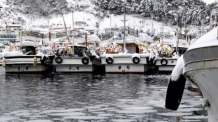 겨울 본격화 선박ㆍ항만 특별 안전점검…저수온 피해 경계령도