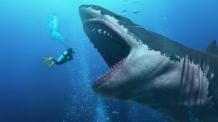 '괴물 상어' 메갈로돈 멸종 이유 밝혀졌다
