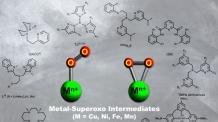 (온1200)생체내 금속효소로 생체모사 촉매 개발한다