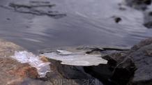 [헤럴드포토] '한강의 얼음…