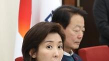 """나경원 """"박지원 끌어들여…손혜원 역시 홍보전문가"""""""