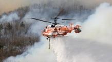 태백서 산불,  강풍 타고 번져…헬기·인력 투입 진화 중
