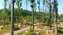 푸른수목원, 생태탐험 참여 기관·단체 모집