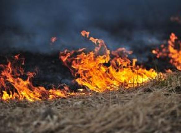 대구 환성산 산불 재발화 진화중…건조한 날씨에 불씨 되살아나