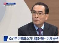 """태영호 """"文 도착때 北 태극기 뺐다…관례 어겨"""""""