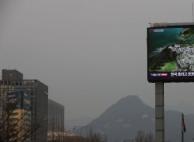 내일 수도권·충북 홀수차량 운행 제한조치