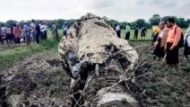 중국산 F-7 전투기 미얀마서 또 추락…조종사 2명·10세 소...