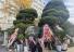 감사원 앞에는 최재형 응원 화환
