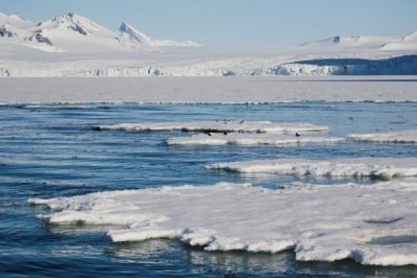 Climate change increases ice around Antarctica: study