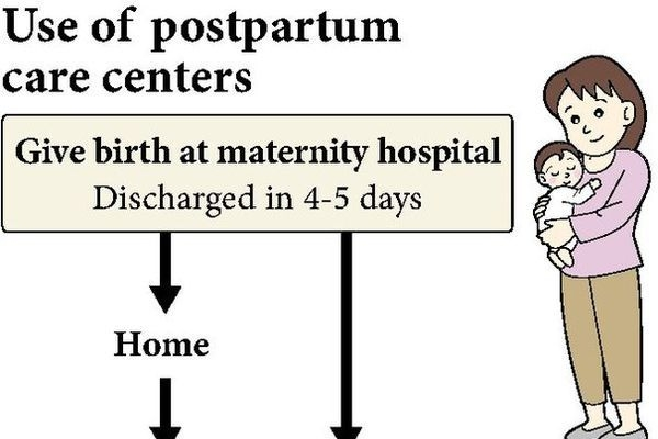 Japanese government to establish postpartum centers