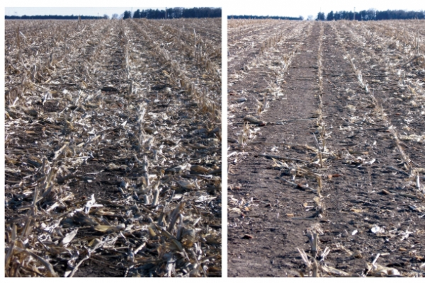 Study says fuels from corn waste not better than gas