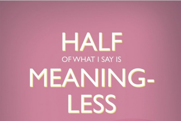 'Half of What I Say is Meaningless' a strikingly felt essay collection