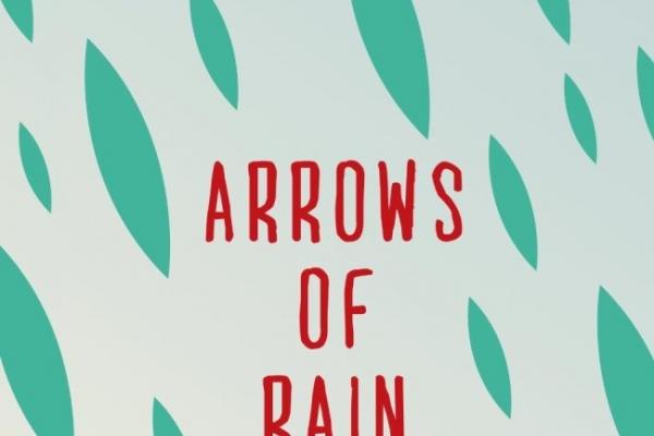 Okey Ndibe's 'Arrows of Rain' splits its powerful message