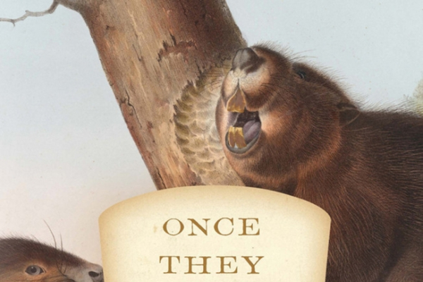 The saga of the resilient beaver