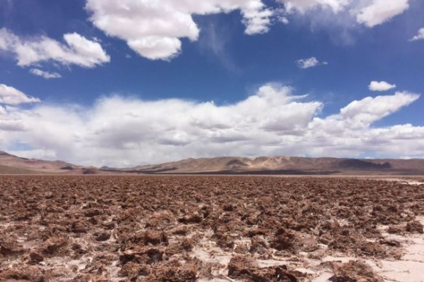 POSCO bets on lithium business