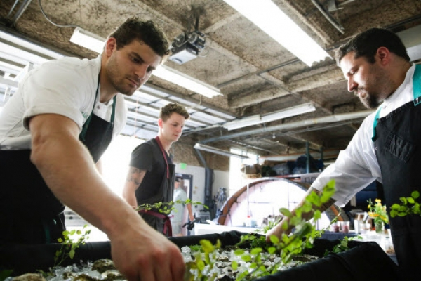 Cannabis chef takes fine dining to new high