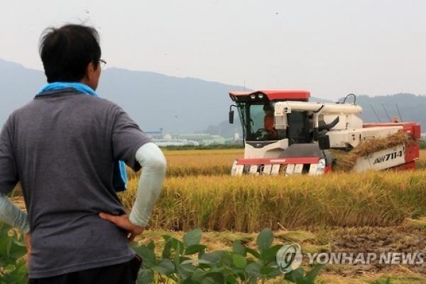 Korea to reduce rice paddies in 2017