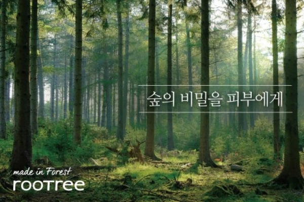 Organic cosmetics Rootree expands beyond domestic market