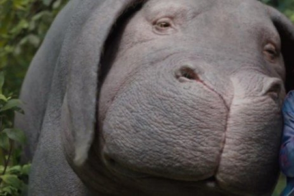 'Okja' makes shortlist for VFX Oscar