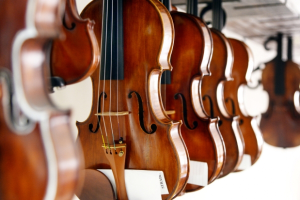 [Photo News] Anatomy of string instruments