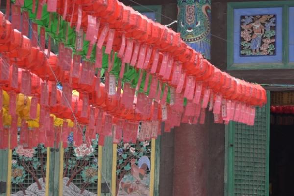 [Video] Koreans flock to temples to celebrate Buddha's Birthday