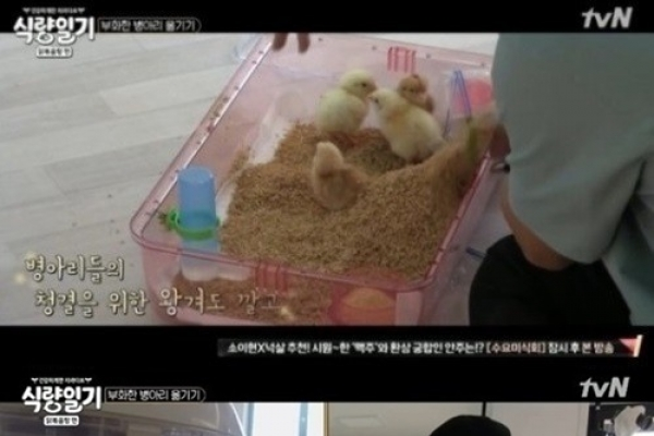 Animal rights activists call for cancellation of 'Food Diary'